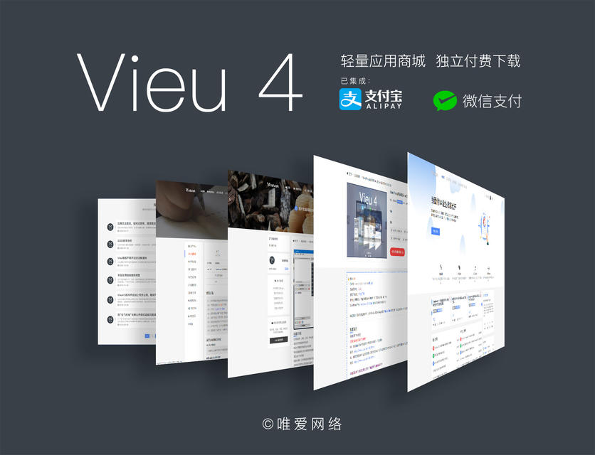 WordPress主题Vieu v4.5【原版】-WP迷死