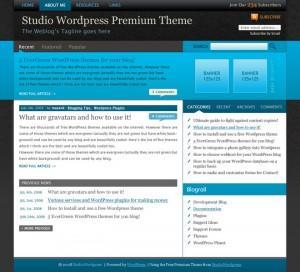WordPress主题StudioWordPress Premiere-WP迷死